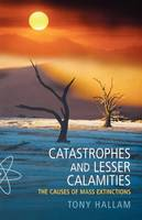 Catastrophes and Lesser Calamities:...