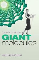 Giant Molecules: From Nylon to Nanotubes