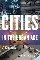 Cities in the Urban Age: A Dissent