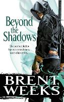 Beyond The Shadows: Book 3 of the...
