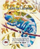 Callan the Chameleon: On Being Different