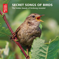Secret Songs of Birds: The Hidden...