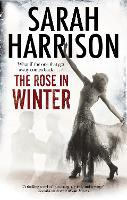 The Rose in Winter