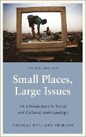 Small Places, Large Issues: An...