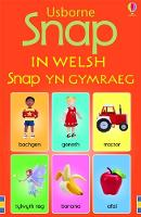 Usborne snap cards in Welsh
