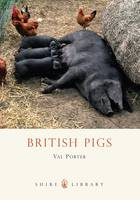 British Pigs