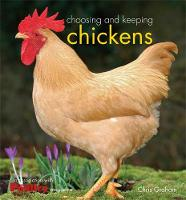 Choosing and Keeping Chickens