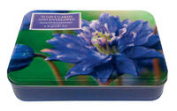 Sensational Flowers Box of Cards: A...