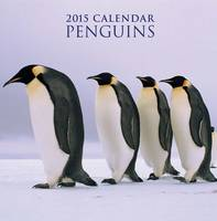 Penguins Calendar Back View