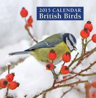 British Birds Calendar Back View
