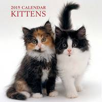 Kittens Calendar Back View