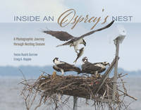 Inside an Osprey's Nest: A...