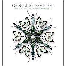 Exquiste Creatures Wall Calendar 2015