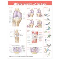 Athletic Injuries of the Knee...