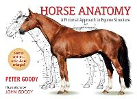 Horse Anatomy: A Pictorial Approach ...
