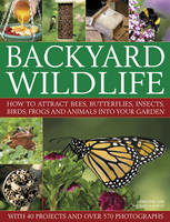 Backyard Wildlife: How to Attract...