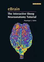 EBrain: The Interactive Sheep...