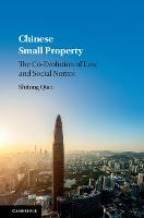 Chinese Small Property: The...