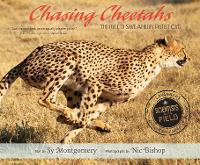 Chasing Cheetahs: The Race to Save...