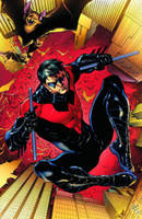Nightwing Volume 1: Traps and ...