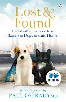 Lost and Found: True Tales of Love ...