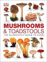 Mushrooms & Toadstools