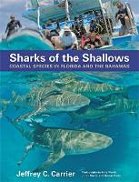 Sharks of the Shallows: Coastal...