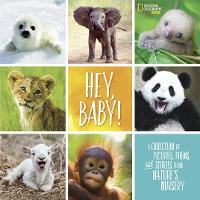 Hey, Baby! (Stories & Poems)