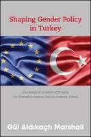 Shaping Gender Policy in Turkey:...