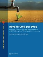 Beyond Crop per Drop: Assessing...