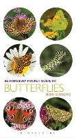 Pocket Guide to Butterflies