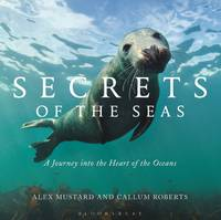 Secrets of the Seas: A Journey into...