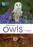 RSPB Spotlight Owls