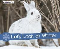 Let's Look at Winter