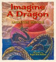 Imagine a Dragon