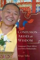 Confusion Arises as Wisdom: Gampopa's...