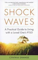 Shock Waves: A Practical Guide to...