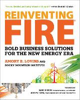 Reinventing Fire: Bold Business...