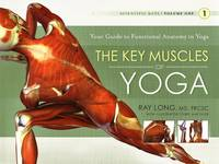 Key Muscles of Yoga: Your Guide to...