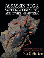 Assassin Bugs, Waterscorpions, and...