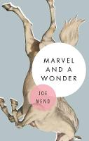 Marvel and A Wonder: A Novel