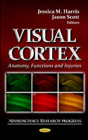 Visual Cortex: Anatomy, Functions &...