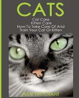 Cats: Cat Care: Kitten Care: How to...