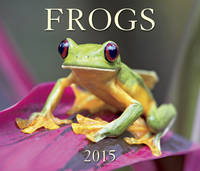 Frogs 2015