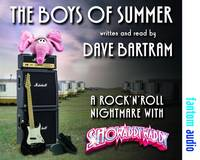 The Boys of Summer: A Rock 'n' Roll...