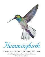 Hummingbirds: A Life-Size Guide to...