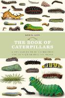 The Book of Caterpillars: A life-size...