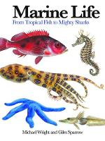 Marine Life: From Tropical Fish to...