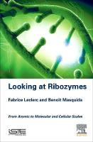 Looking at Ribozymes: From Atomic to...
