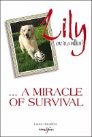 Lily: one in a million: A miracle of...